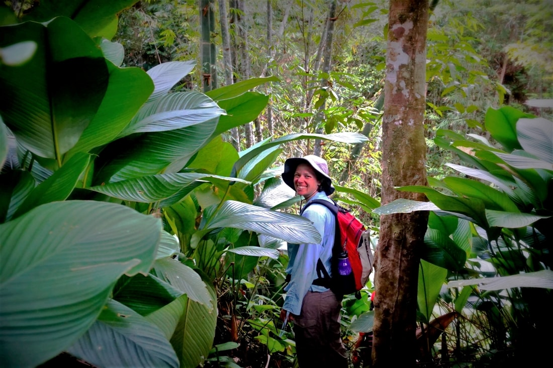 Trek through the rainforest in Kuching with Backyard Tour Malaysia
