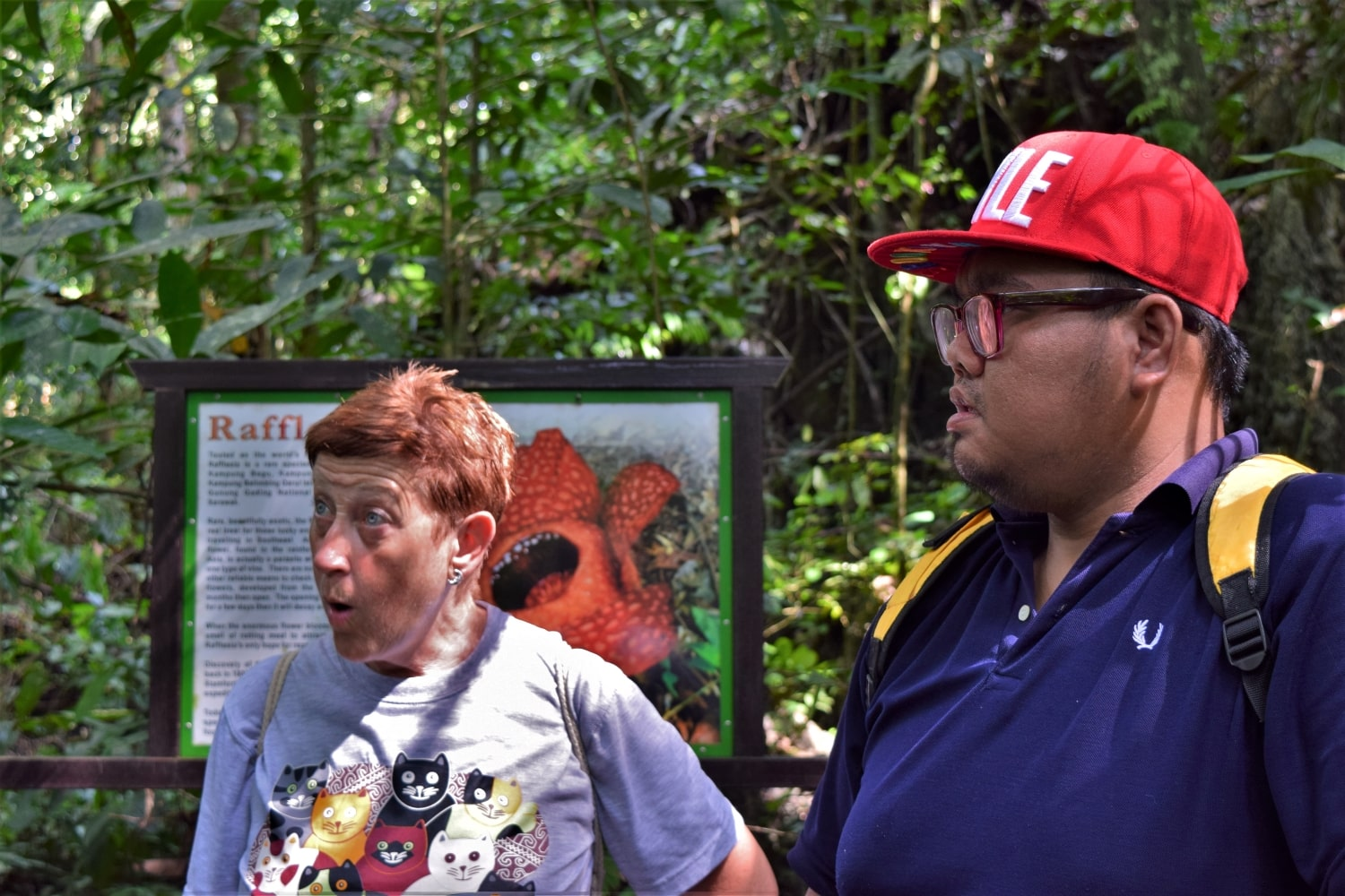Begu Rafflesia Site features the rare Rafflesia flower in Kuching with Backyard Tour Malaysia